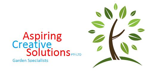 Aspiring Creative Solutions